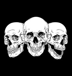 human skulls hand drawn line art set vector image