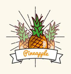 pineapple fruit organic vitamins emblem vector image