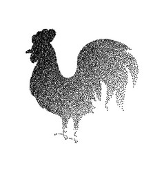 rooster black dotwork vector image