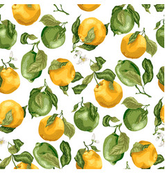 Seamless pattern with fruits fresh oranges and vector