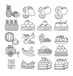 set of cute fruit icon isolated on whi vector image
