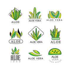 aloe vera logo design set natural product green vector image