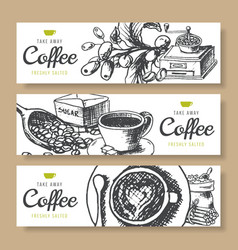 coffee beans roasted background ink hand vector image