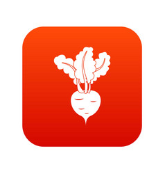 fresh beetroot icon digital red vector image