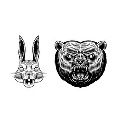Grizzly brown bear and hare or rabbit screaming vector
