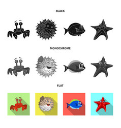 isolated object of sea and animal symbol set of vector image