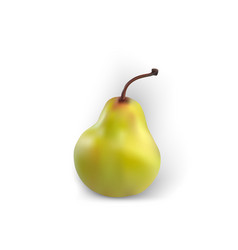 pear isolated realistic white background green vector image