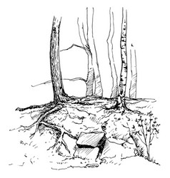 Sketch of tree trunks and rocks vector