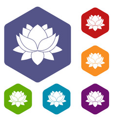 Water lily flower icons set hexagon vector