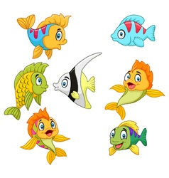 Cartoon fish collection set isolated vector image vector image