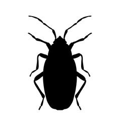 silhouette Pyrrhocoris apterus beetle silhouette vector image vector image