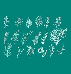hand drawn vintage floral elements flowers leaves vector image