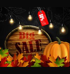 autumn sale wooden signboard vector image