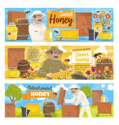 Beekeeping apiary farm and beekeeper vector