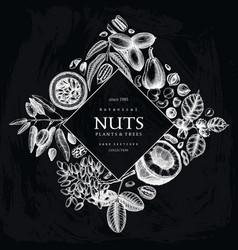 hand drawn nut wreath design vector image