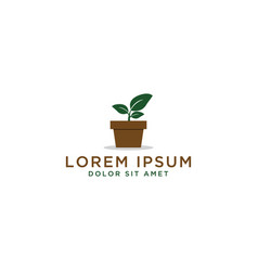 plant pot logo design template vector image