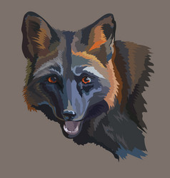 Portrait of black fox vector