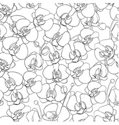 Seamless natural pattern vector