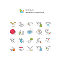 Set line icons gynecology vector
