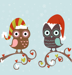 Cute winter Christmas card of owls vector image