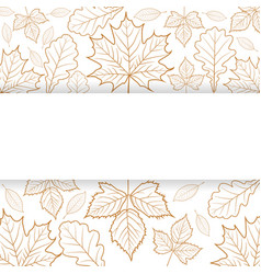 autumn leaves outline with blank banner vector image