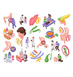 Gastroenterology icons set vector