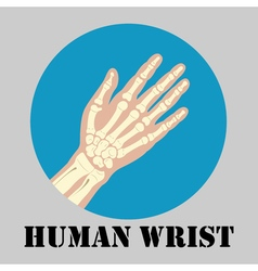 Human wrist emblem vector