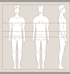 Men body measurements vector