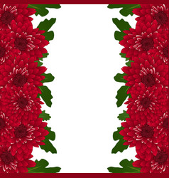 Red mum chrysanthemum flower border vector