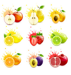 Set juicy fruits with splashes juice vector