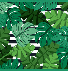Tropical palm leaves jungle leaves seamless floral vector
