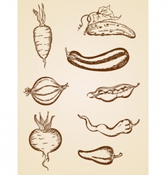 Vintage vegetables set vector