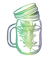 print with a beautiful jar and a sprig of rosemary vector image