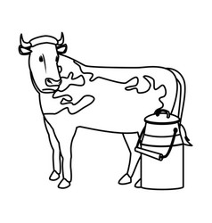 Swiss can milk cow dairy culture concept vector