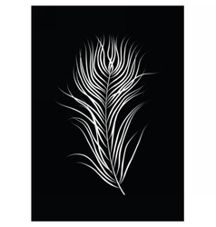 Bird feather on black background vector image vector image