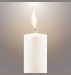 candle flame vector image vector image