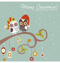 Cute winter Christmas card of owls in hats vector image vector image