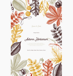 Autumn design card vector