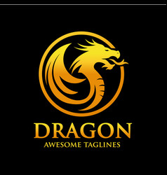 golden dragon circle logo design vector image