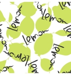 Green lime and lemon fruits on white background vector