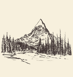 sketch mountains pine forest river drawn vector image vector image