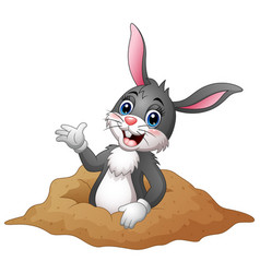 Cartoon rabbit out of holes in the ground vector