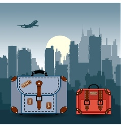 ity with suitcases vector image