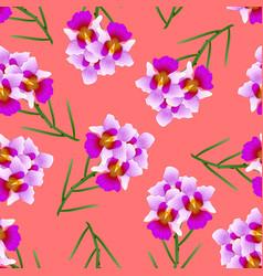 purple vanda miss joaquim orchid on red orange vector image