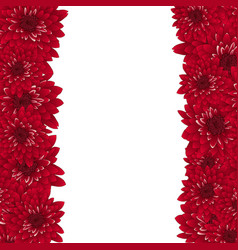 red chrysanthemum border vector image