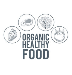 organic healthy food hand draw vector image vector image
