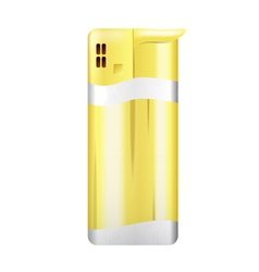 Picture gold lighter vector image vector image