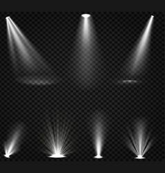 Light beams from spotlights and floor projectors vector