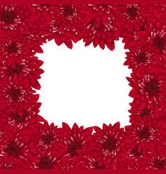 Red chrysanthemum border vector