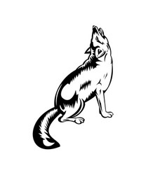 red fox howling viewed from side retro black and vector image